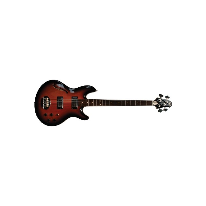 Lakland Skyline Hollowbody Bass with Hardshell case