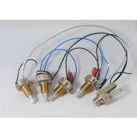 Prewired Passive Harness (Volume - Blend - Tone - Tone)