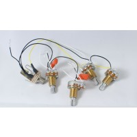 Prewired Passive Harness (Volume-Volume-Tone-Tone)