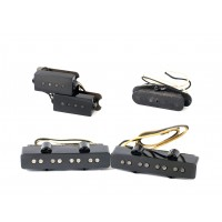 Seymour Duncan Antiquity I Pickups