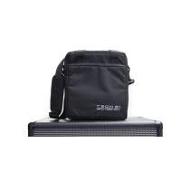 Tech 21 Gig Bag for VT Bass 500